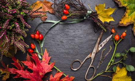 Jak si levně vyzdobit domov na podzim – DIY tipy obsaženy v článku