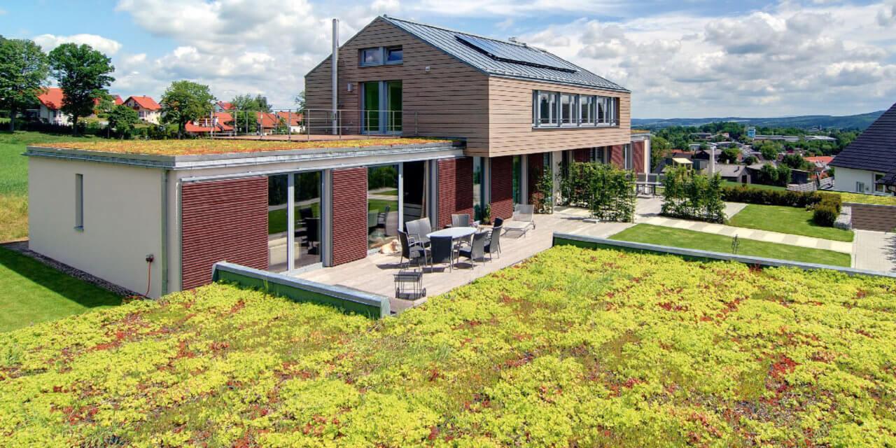 Zelené střechy v létě chladí a v zimě izolují